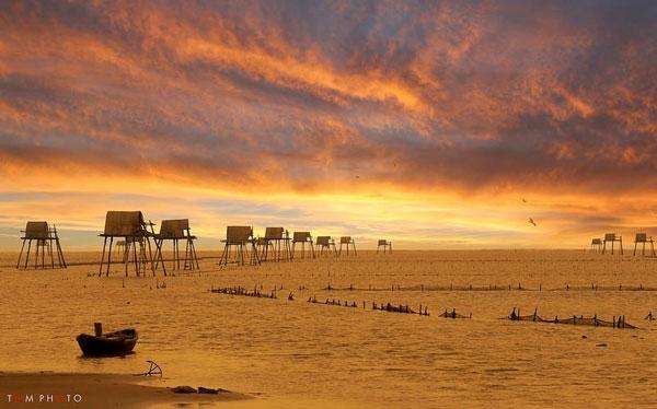 bãi biển Cồn Vành Thái Bình