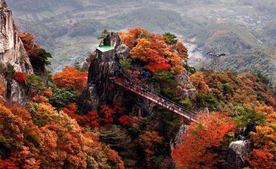 Những địa điểm du lịch Hàn Quốc20