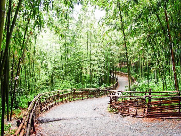 Những địa điểm du lịch Hàn Quốc11