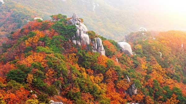 Những địa điểm du lịch Hàn Quốc8